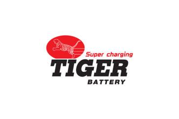 باتری یو پی اس tiger